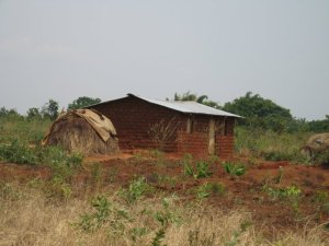 A newly-built home of mud brick, with the old straw home retained alongside.  It is much cooler during the heat of the day than the 'modern' home.