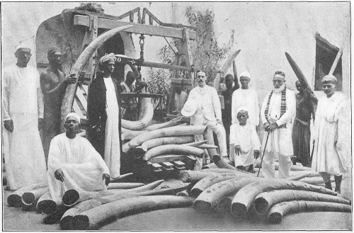 Ivory was transported from the interior to coastal ports for export to the Middle East and elsewhere