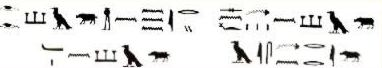 Ebers Papyrus, section on use of pig eye humor for treatment of eye problems