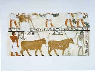 Ancestors of the current Beja herding Nile Valley in the Eastern Desert