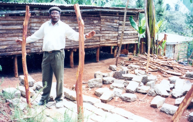 Showing of a raised goat house that allows for urine and manure to drop through, collected and used on fodder crops.