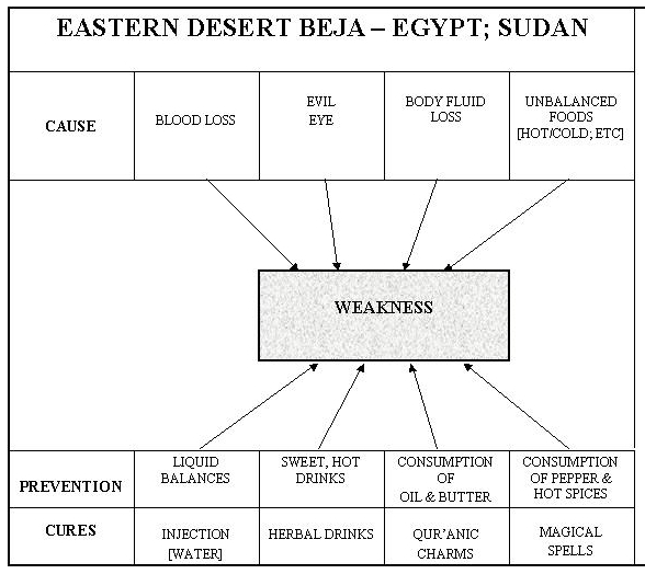 Beja-Weakness Causes & Cures