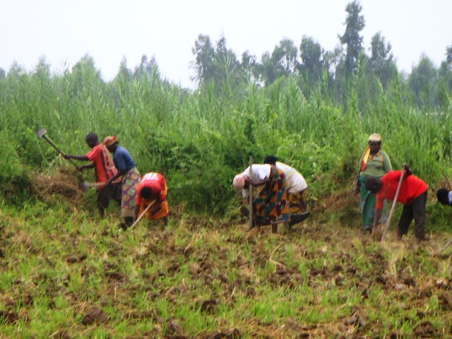 Men & women in the nearby village helping one another to prepare plots