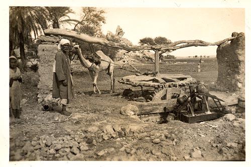 Saqieh of the Daramalli fmly, 1924, Qurna Hist. Project.  qurna.org