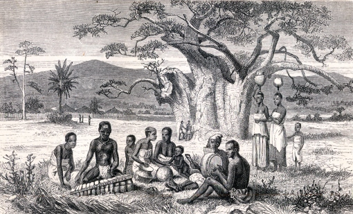 Cuisines and crops of africa 19th century zambezi river for African crops and slave cuisine