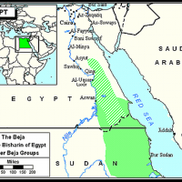 Locusts and Hyenas: The Red Sea Hills of Eastern Egypt & Sudan