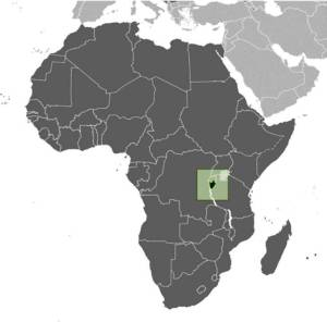 Burundi, the small green 'heart', is to the west of Lake Tanganyika.  Source. countriesfactbook.com