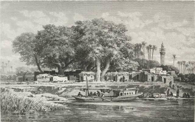 Delta village.  The boat in which she traveled up to Cairo from Alexandria would have been similar to this.  Source: Picturesque Egypt by Ebers.
