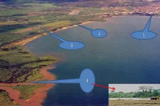 North end of the Lakeç 1-Bujumbura, 2-Hotel du Lac Tanganyika, 3-Modern Kajaga village, 4-Rusizi river and wetlands