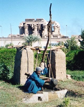 Shadduf in use near the Upper Egyptian town of Kom Ombo.  Source - Wikipedia