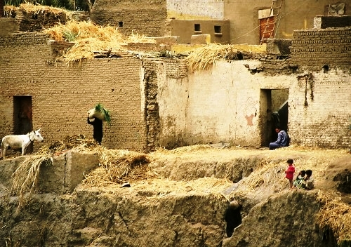 Villages and hamlets in Egypt have traditionally been compactly built of mud brick, with crop leavings and fuel wood (such as cotton stocks) being stored on the roofs, as here.  In the absence of both space and rain, this is a good policy.  Source - Impresions de Egipto