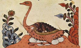 The Book of Animals of al-Jahiz, Syria, fourteenth century Irwin_Darwin in Arabia