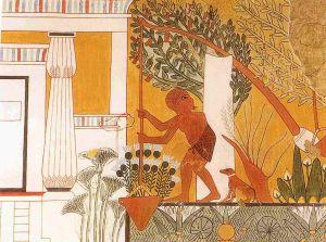 Shadduf in ancient Egypt, tomb of Ipuy, Deir el :edina.  Source - Wikipedia