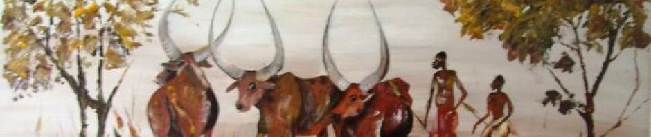 Ankole cattle, Burundi