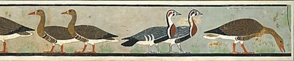 cropped-charles-k-wilkinson-1920-21-met-dy-4-ca-2550.jpg