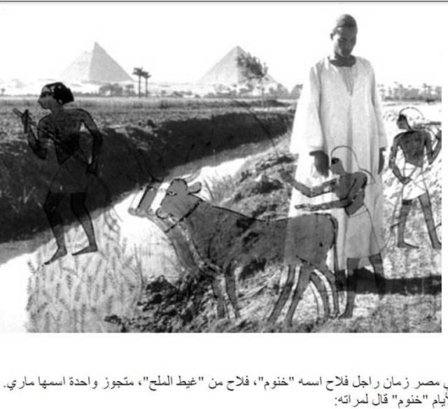(روائع الأدب المصري القدیم الفلاح الفصیح ( 2014