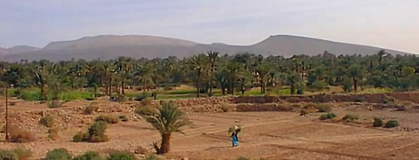 Akka  Oasis in southern Morocco.  Source - looklex.com