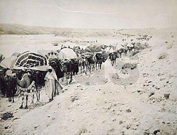 Caravan travelling in the region of Algeria.  Source -