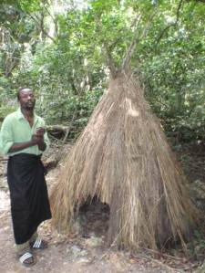 a-traditional-spiritual-hut-at-the-gate-of-kaya-kinondo.  the sacred mijikenda kaya forests - UNESCO: World Heritage sit