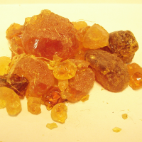 What Samuel Baker, Explorer, Can tell Us about Gum Arabic 1 of 3